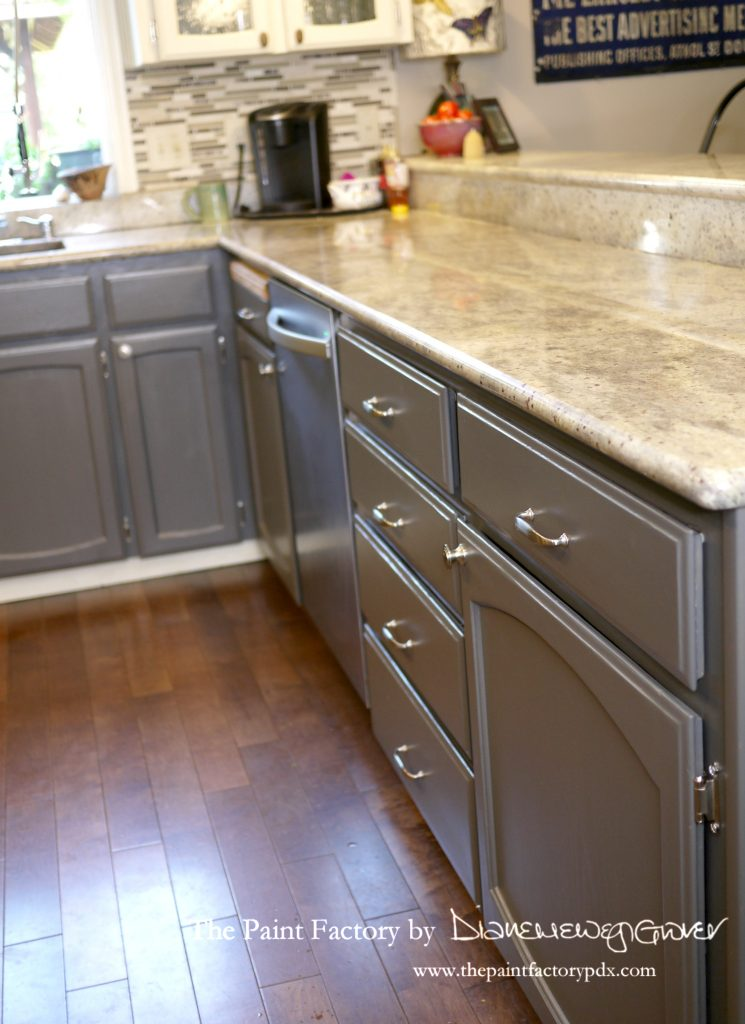 Phenomenal Painting Kitchen Cabinets With Wise Owl One Hour Enamel Home Interior And Landscaping Oversignezvosmurscom