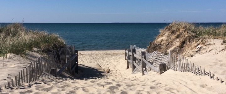 Doesn't 'Painting on Cape Cod' sound heavenly?